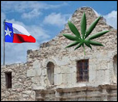 Texas Democratic Party endorses decriminalization of marijuana