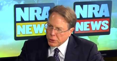 NRA President attacks Bob Costas (VIDEO)