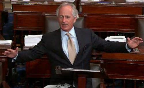 GOP Senator's Bizarre 'Cheeto Bag' Rant (VIDEO)