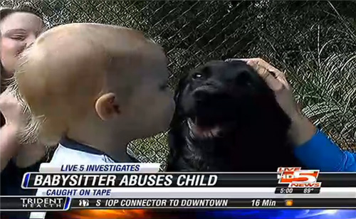 Family Dog Saves Child From Abusive Babysitter (VIDEO)