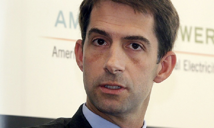 Tom Cotton Suggests Critics Of Indiana Law Should Be Grateful State Doesn't Execute Gays (VIDEO)