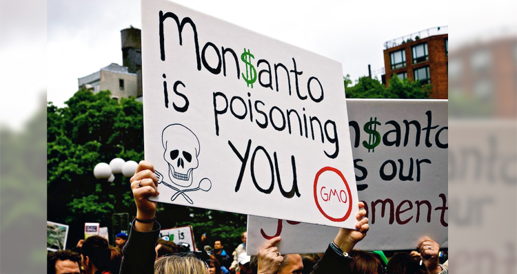 Monsanto Hires Mercenaries To Intimidate Activists – Video