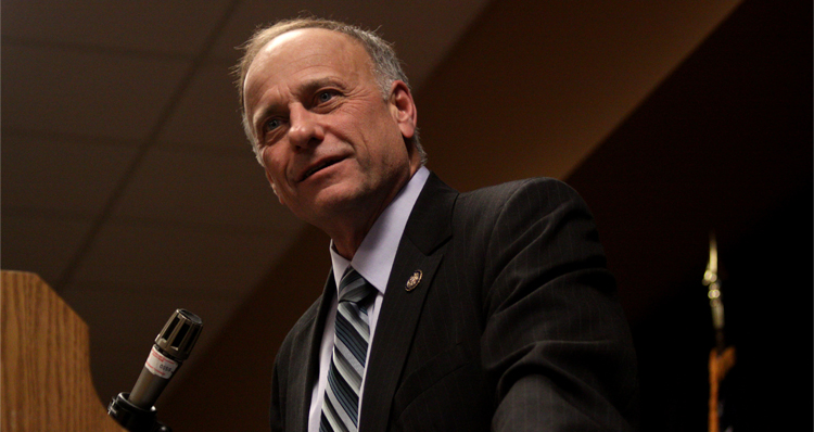 Rep. Steve King: Same Sex Marriage Will Lead To People Marrying Lawnmowers