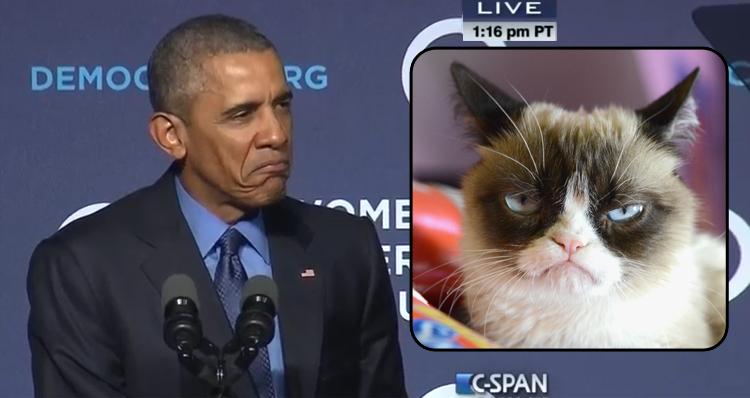 Obama Trolls Republicans, Comparing Them To Grumpy Cat (Video)