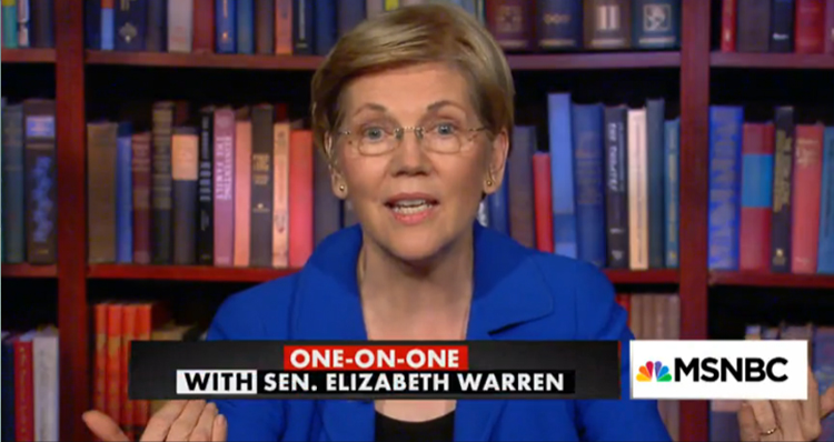 Elizabeth Warren Hits Back At GOP Congressman Who Says She Should Be Neutered – Video