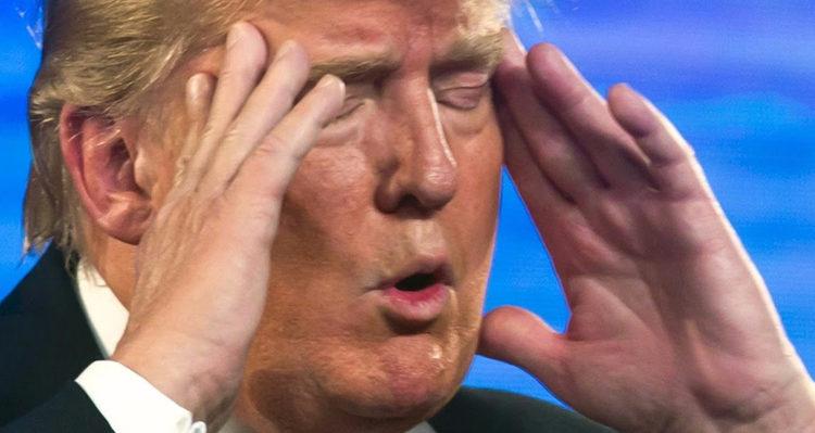 Go-Fish-Trump