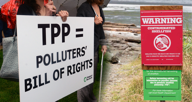 TPP Trade Deal Will Allow Imports Of Poisoned Seafood