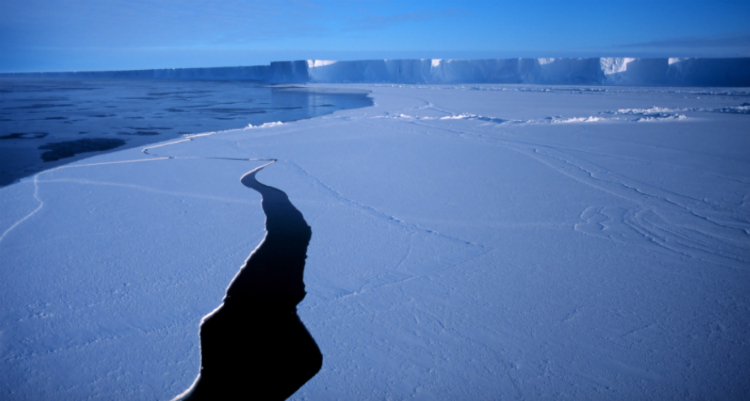 We Are F**ked: Antarctica Is Melting