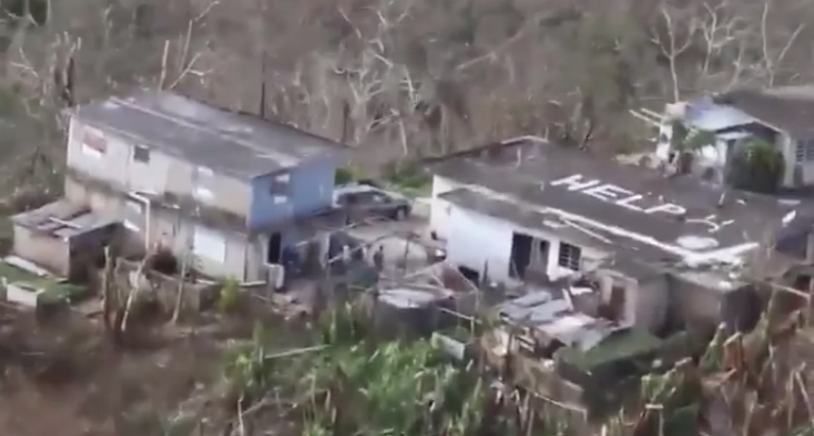 Trump Is Focused On Dividing The Country While The People Of Puerto Rico Are Dying (Video)