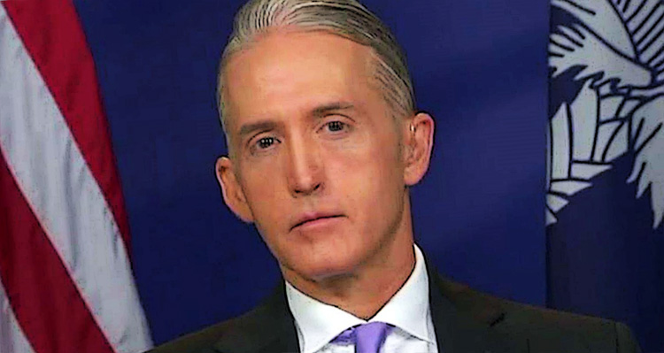 Trey Gowdy Paid Off Benghazi Committee Whistle-Blower Using Public Funds