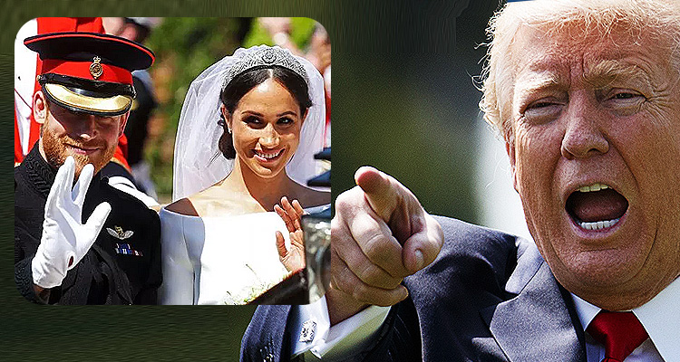 J.K. Rowling And The BBC Troll Trump With Royal Wedding Crowd Photos
