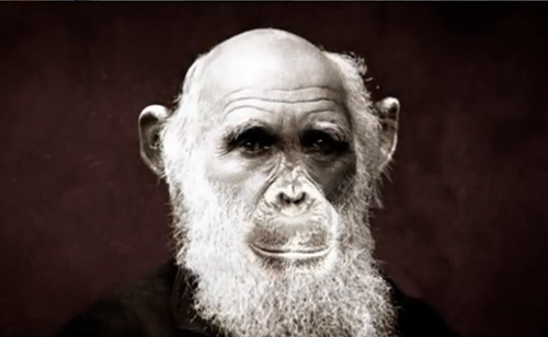 HBO's Questioning Darwin: Creationists Go Full Bat-Shit (VIDEO)