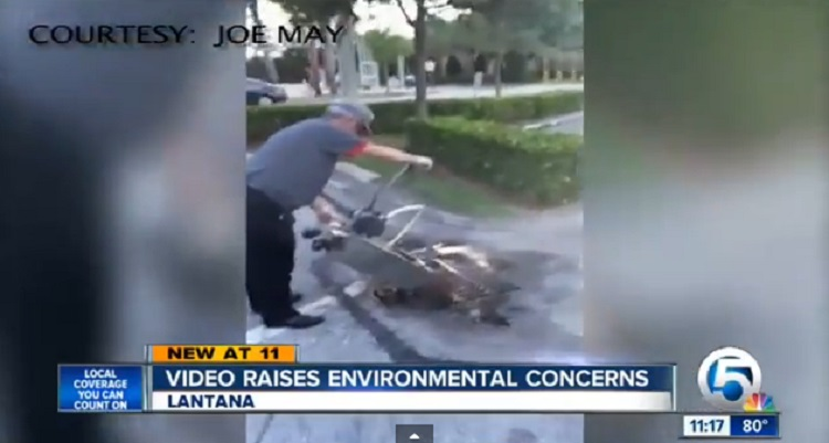 Burger King Employee Caught Dumping Used Oil Into Storm Drain – VIDEO