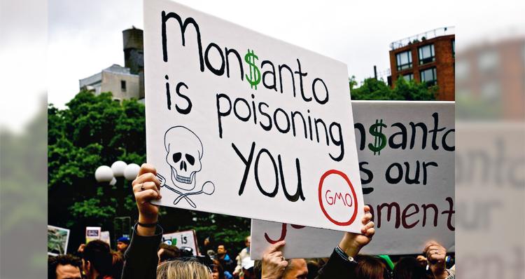 Monsanto Hires Mercenaries To Intimidate Activists – Video