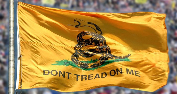 Tea Party Touts Pro-Slave Roots (Video)