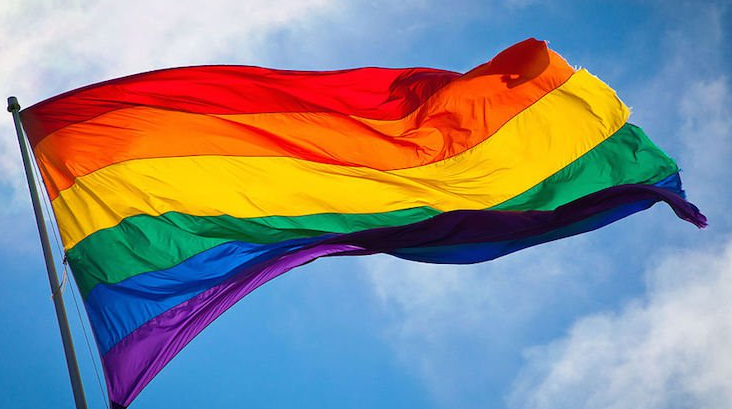Mike Pence Trolled By Neighbors FlyingGay Pride Flags
